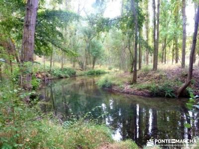 Hoces Río Duratón - Villa Sepúlveda; actividades turismo escapada fin de semana